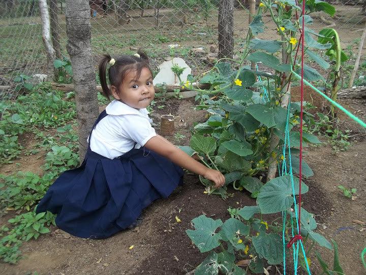 School Gardens for Rural Nicaraguan Communities