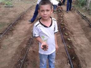 Transplanting seedlings in anticipation of rain!