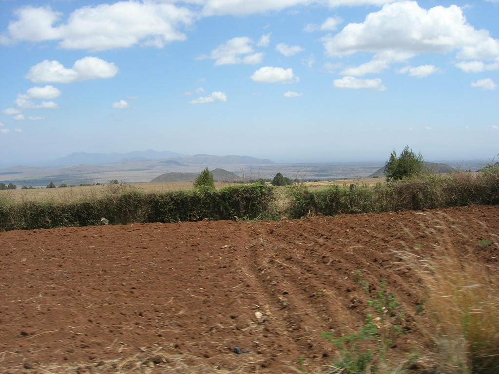 Farm site under preparation