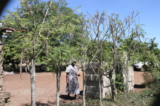Gogo at her homestead