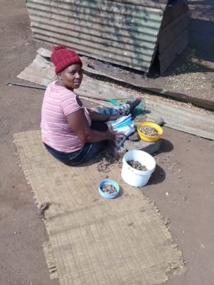 A 'Make' (mother in siSwati) cracks marula nuts