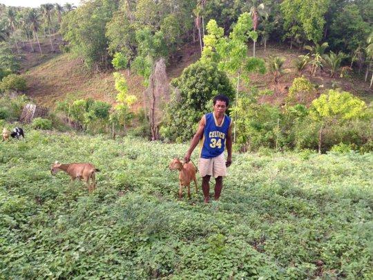 Goat livelihood project