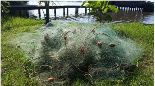 Confiscated gillnet