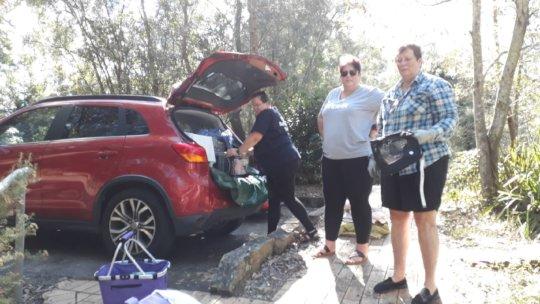 Bat pups road-trip ready