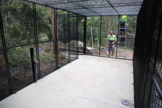 finishing the new cage