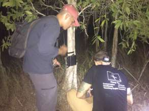 Setting up the camera traps on the islands