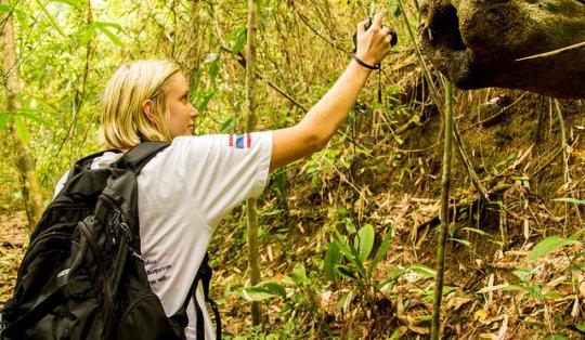 Biodiversity Surveys