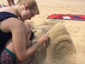 Sharks taking shape in the sand