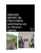 GNB_Empower_mini_reportEarly_Field_visit.pdf (PDF)