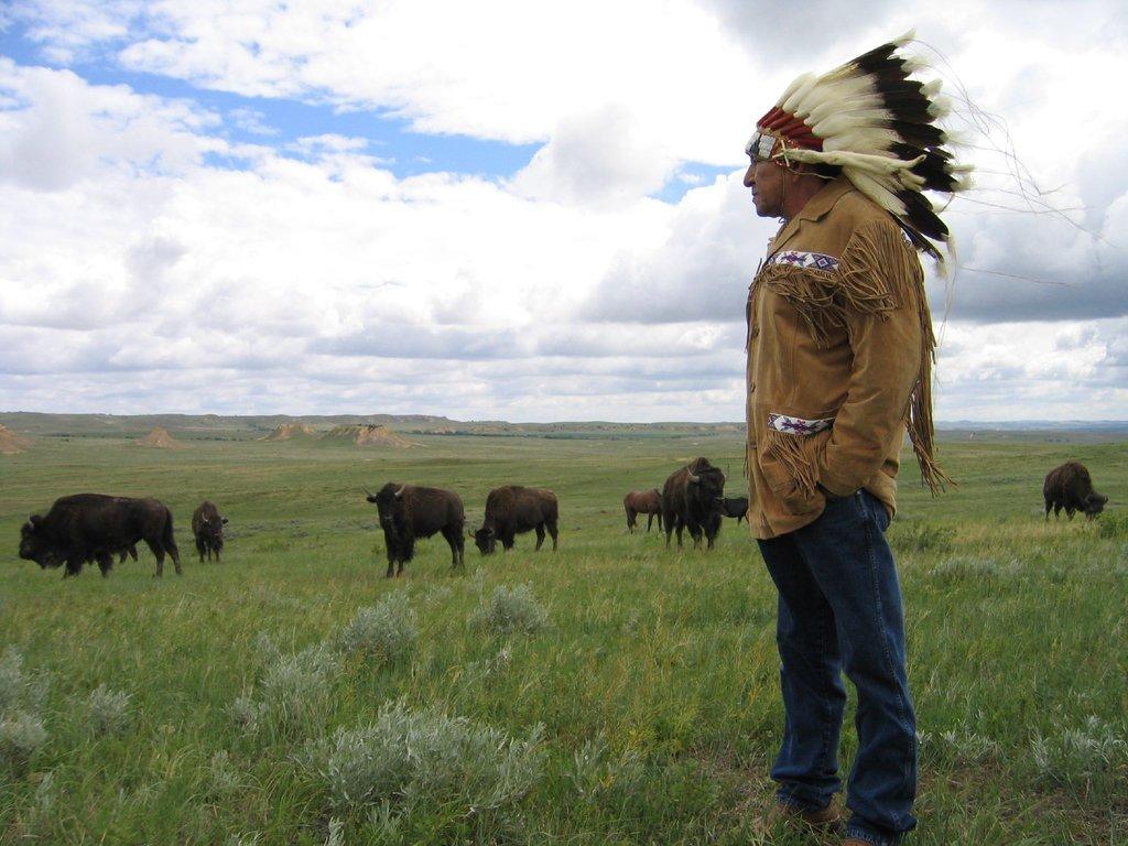 Lakota Lands Recovery Project