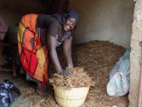 Supporting women with agro micro loans