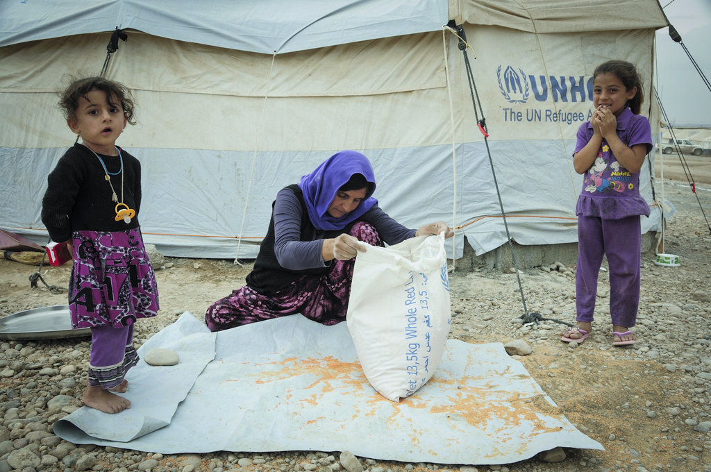 Emergency Aid for Displaced People in Kurdish Iraq
