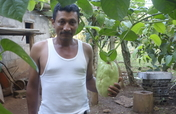 Help 1,600 Nicaraguan Farmers Rise Out Of Poverty