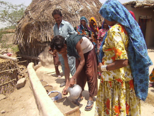 Women planting seeds at household level
