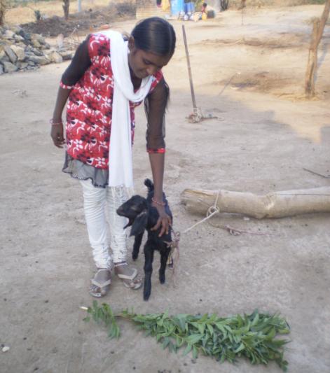 "Prajakta with the new she-goat ""Fulli"""