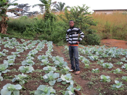 Youth Agriculture farm
