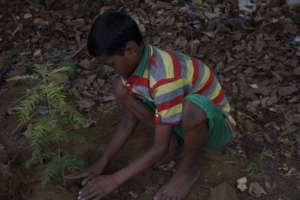 Children got their hands on dirt to plant trees