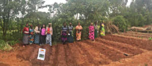 Soyama Ladies Association Vegetable Garden