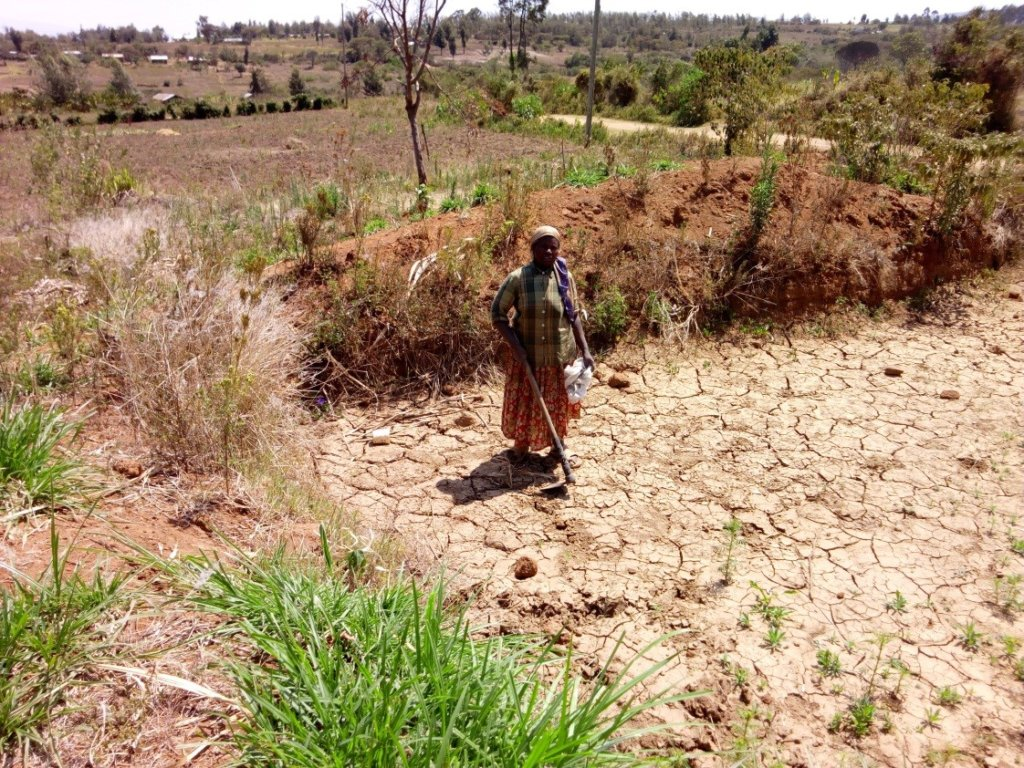 Rift Valley is currently drought-stricken.