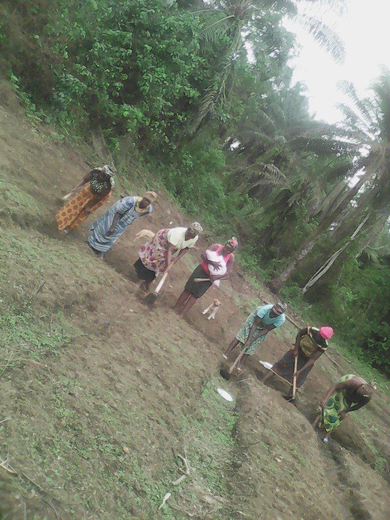 Women Working in the School Garden
