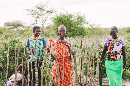 Samburu women teach us to build a manyatta (house)