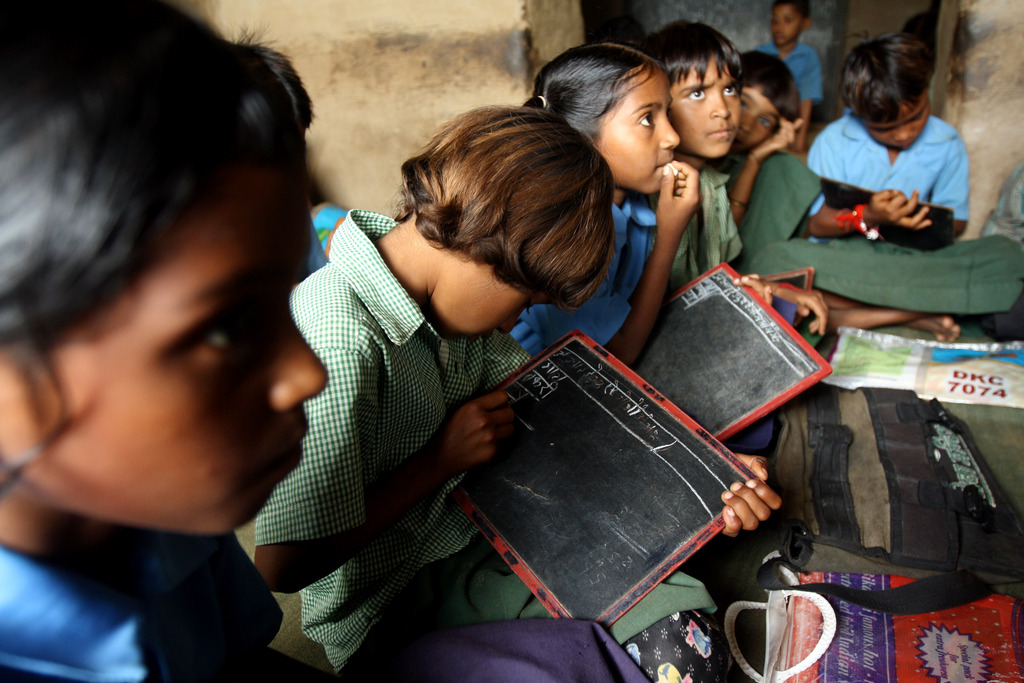 A group of children concentrating on their studies