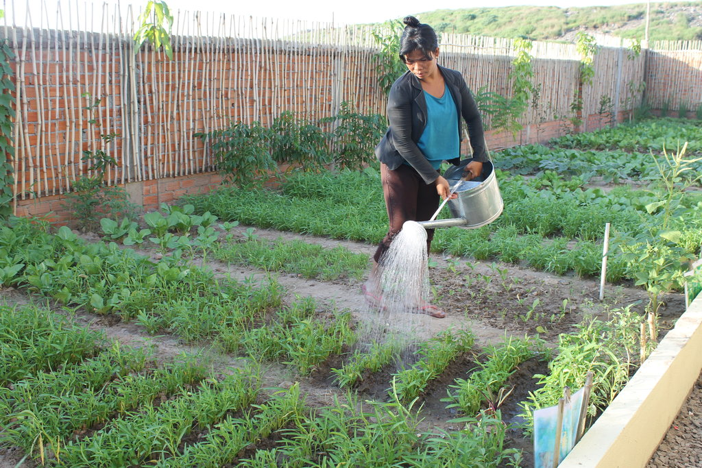 Bring Community Gardens to 10,000+ in Cambodia