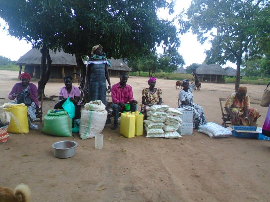 Distribution of food for Nodding Syndrome families