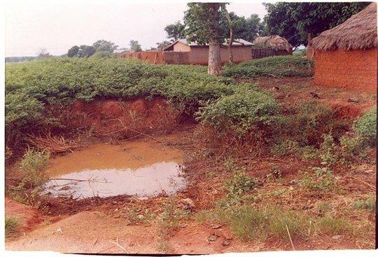 Typical mosquito breeding site in rural Mashegu