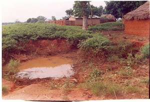 Typical mosquito breeding site in rural Mashegu
