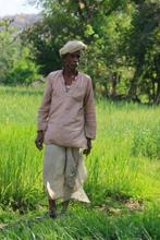A farmer standing in his wheat farm.
