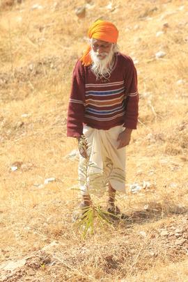 Hopeful Babaji with his young Amla Sapling