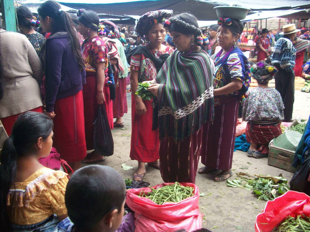 Vegetable Gardens for Widows with No Resources