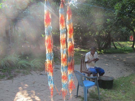 """Colorful """"Lemur tails"""" drying in the sun"""
