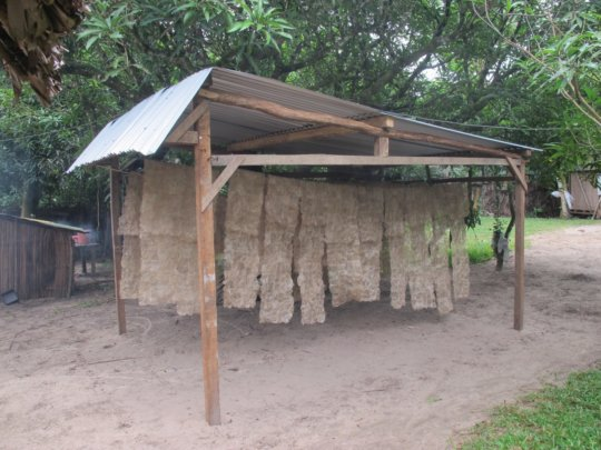 New silk drying house constructed this summer