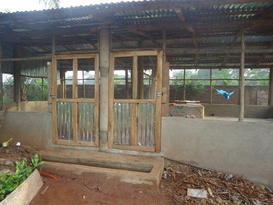 New hen-house