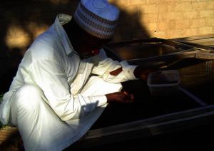 Shehu Gagare feeding fish