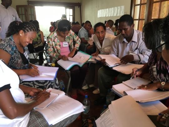 Mental Health Training in Madagascar