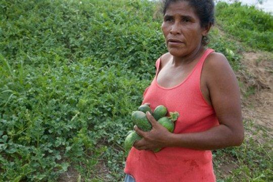 Harvesting Hope member (c) Elizabeth Rappaport