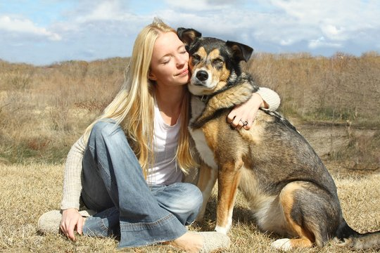 Protecting Pets In Domestic Violence 2016