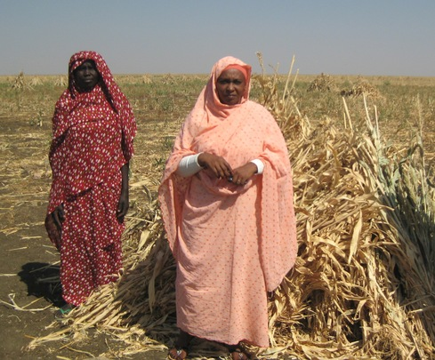 Women Farmers in Sudan