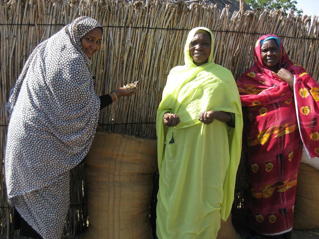 Uniting Women Farmers in Sudan 3