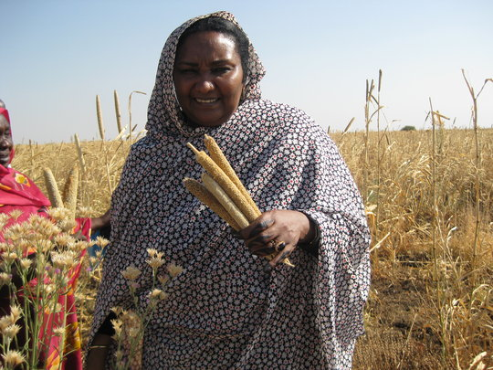 Support Women Farmers in Sudan