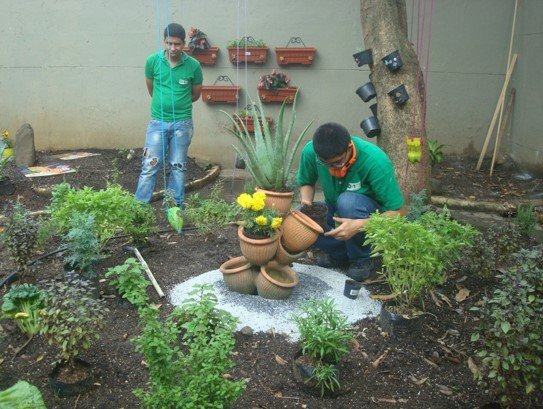 Sowing seeds of ecological education