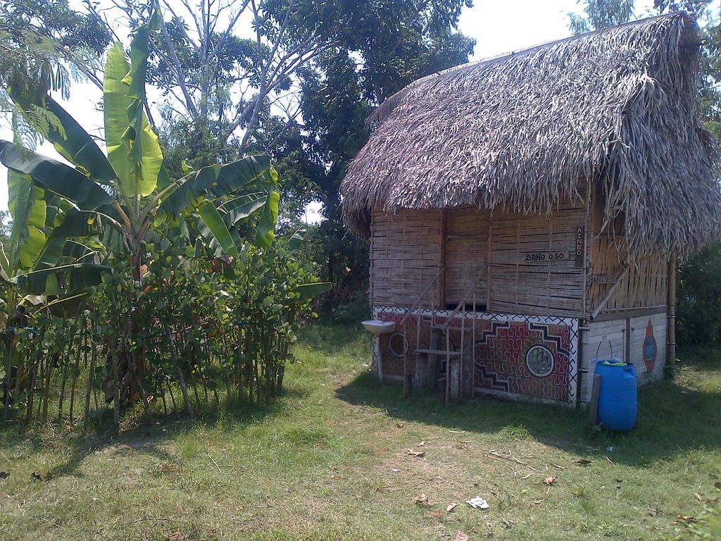 Regenerate the Peruvian Amazon: Farmacia Viva