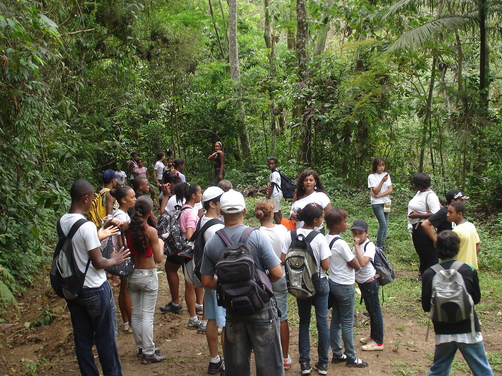 Inside the forest. Teacher speaking to students.