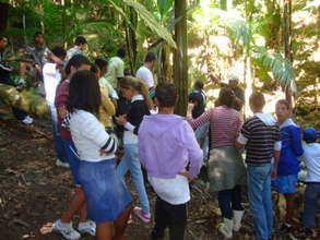 Students visiting agroforestry experiment