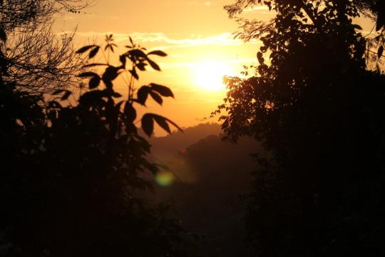 Morning. Concordia Mountain Wildlife Sanctuary