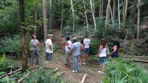 Tree nursery and agroforestry demonstration area.