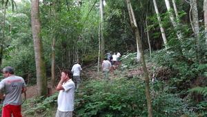 Agroforestry demonstration area.